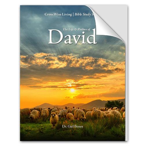 The Life & Psalms of David