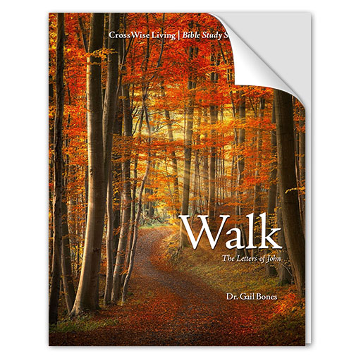 Walk: The Letters of John Bible Study
